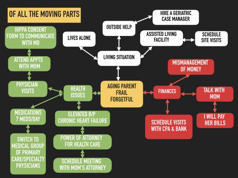 "Sorting Out Aging Parent's Situations and Issues: Start With A Graphic Overview of ""All The Moving Parts"""